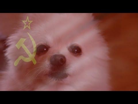 Gabe the Dog - Soviet Barks (C&C: Red Alert)