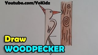 How to draw a woodpecker step by step and very easy