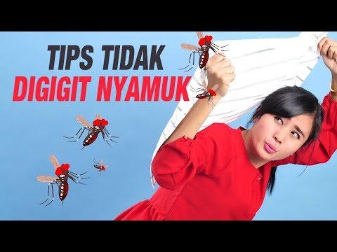 Bagaimana Cara Mengusir Nyamuk dan Agar Tidak Digigit Nyamuk? Mp3