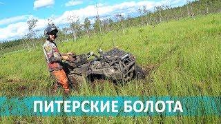 Питерские ковровые болота   в гостях у alexmotorsspb