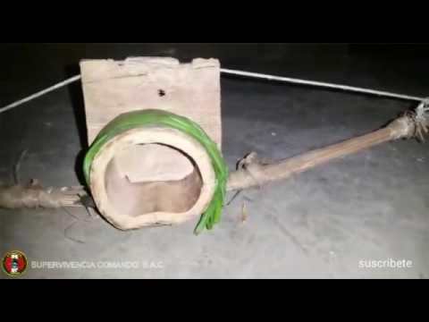 Trampa para ratas no 4 mousetrap no 4 youtube - Trampas para cazar ratas ...