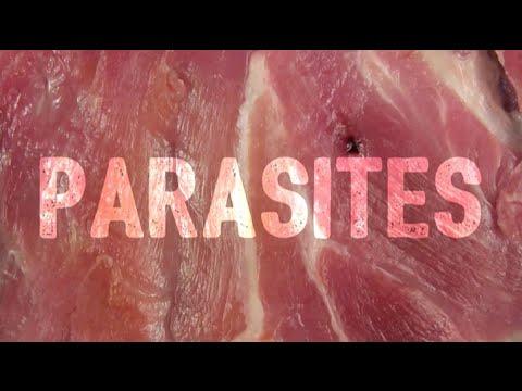 Parasites by Ugly Casanova (Lyrics)