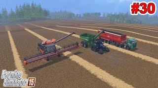 FARMING SIMULATOR 2015: Mega colheita de trigo [PC].
