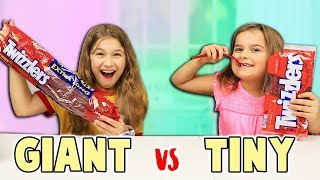 GIANT CANDY VS TINY CANDY Switch-Up! | JKrew