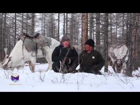 Mongol zoog Tsaatan