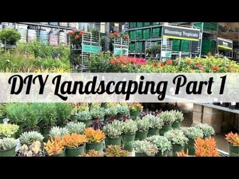 DIY Landscaping Part 1 | DIY Landscaping | Low Maintenance Landscaping | Living In The Mom Lane