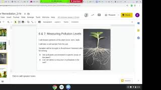 Science for Everyday Decisions #25: Sunflowers for Soil Clean-up by Cody Kanyaro