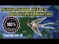 Download Suara Panggil Burung Walet Kalimantan  Mp3 - Mp4 Download