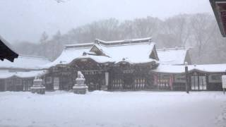 Falling snow at Suwa Shrine, Tachikawa, Tokyo 諏訪神社結婚式場 立川市 東京