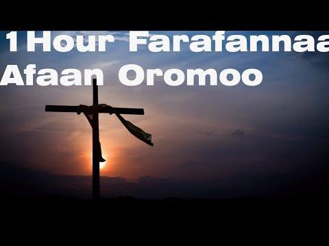 Farfanna Afaan Oromoo Waliti fuufaa I 2018