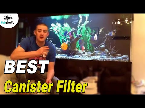 Best Canister Filter In 2020 – Tested, Compared & Reviewed