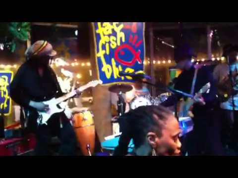 Reggae Show Fat Fish Blue