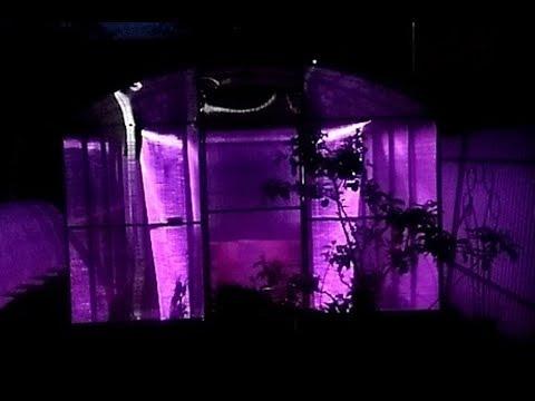 Светодиодное освещение для теплицы