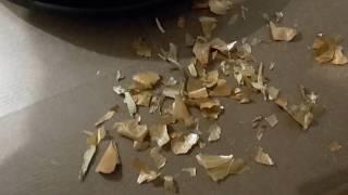 Робот-пылесос Miele Scout RX2 & Iclebo Omega - уборка шелухи