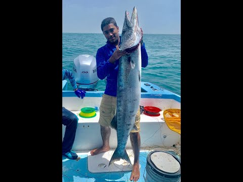 Jigging Offshore Trinidad
