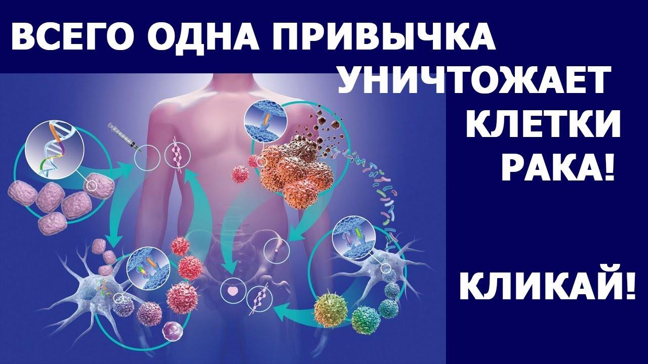 Онкология Врачи назвали привычки, защищающие от рака Профилактика онкологии