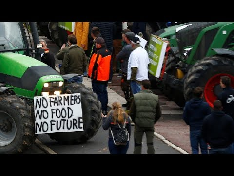 Протесты фермеров в Германии!