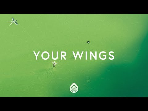 Lauren Daigle ~ Your Wings (Lyrics)
