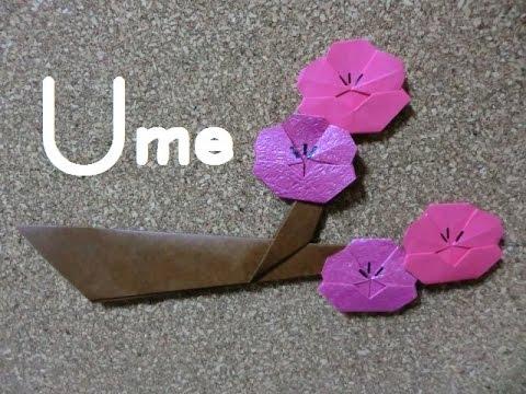 折り 折り紙 折り紙 梅 : youtube.com