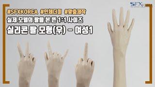 [SFXKOREA 인체모형] 실리콘 팔 모형(우) - …