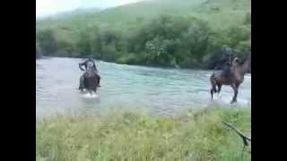 риболовля киргизки