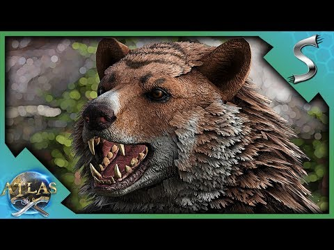 ONE OF THE MOST USEFUL STARTER TAMES IN ATLAS! TAMING A BEAR! - Atlas Adventures [E2]