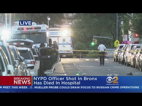 NYPD Officer Shot In Bronx Has Died