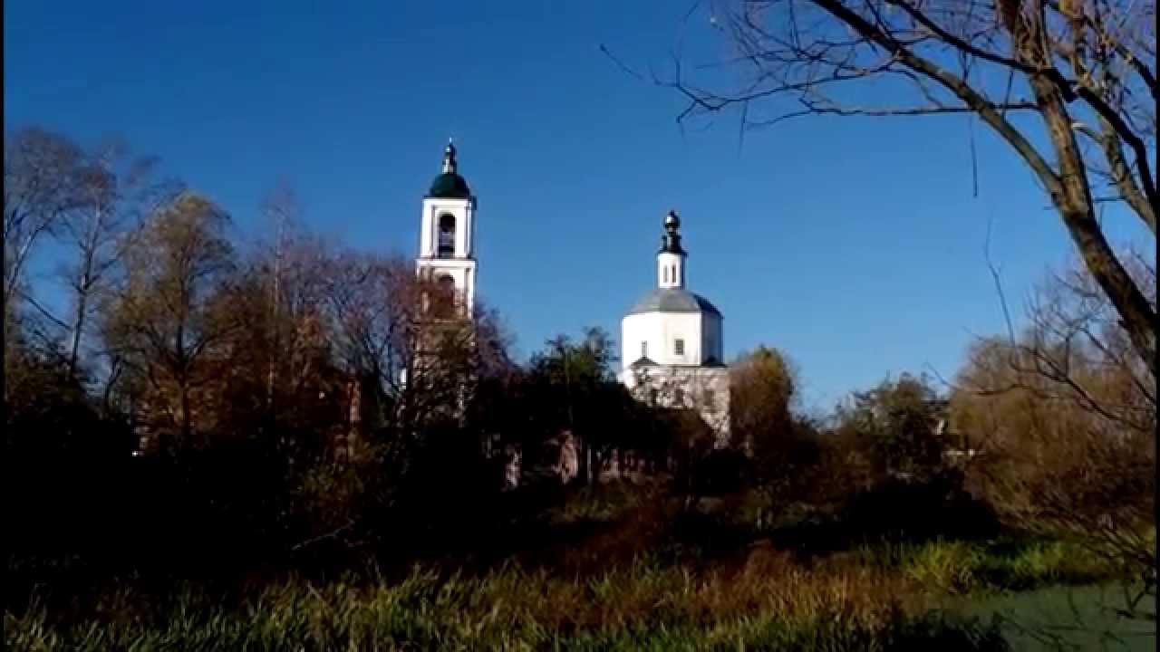 Кабаны вышли к деревне во Владимирской области - YouTube