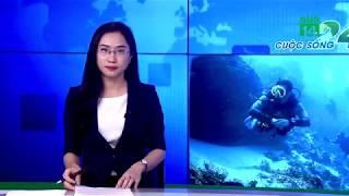 Thợ lặn châu Phi bắt trộm bào ngư cho… người giàu Trung Quốc | VTC14