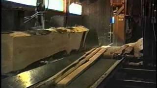 Jackson Lumber Harvester 3 Saw Vertical Edger