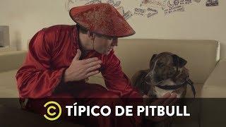 Los Modales - Típico de Pitbull de Federico Cyrulnik