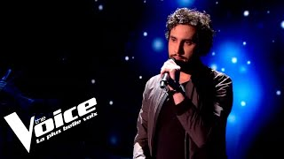 the voice france saison 7