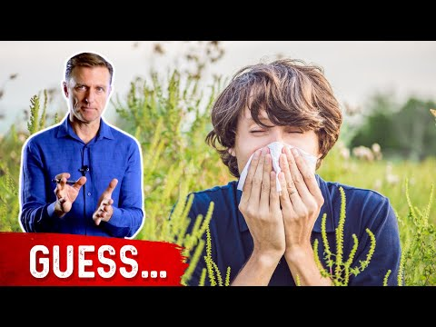 The 3 Top Allergies on the Planet