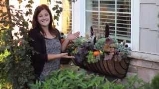 Fall Window Basket Planter Ideas
