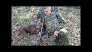 Dieser junge Hirsch kam zu einem Soldaten, was dann passierte ist unglaublich