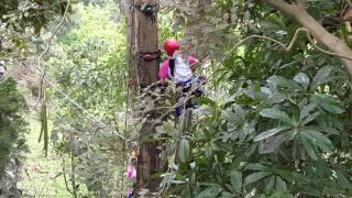 1050401香港私立嘉諾撒聖心小學體驗滑降、爬樹