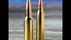 New AR Battlefield Ammo: 6.5 Grendel vs 5.56