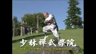 少林禪武學院 Shaolin Martial Arts Academy Master Yuan Vancouver Kung Fu Tai Chi Qigong 1