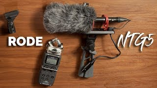 Shotgun Mic for Indie Films, TV & Docs - Rode NTG5
