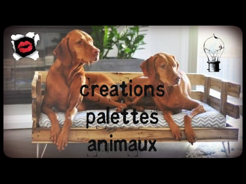 cr ations en palettes pour animaux youtube. Black Bedroom Furniture Sets. Home Design Ideas