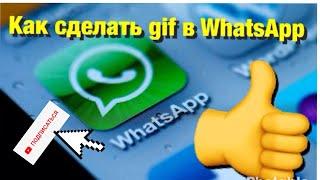 Как сделать gif в WhatsApp StasPereluka