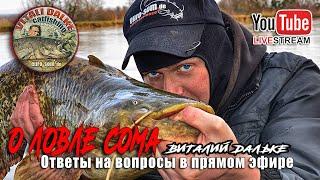 Ловля сома ответы на ваши вопросы Виталий Дальке в прямом эфире