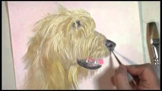 Irish Wolfhound Graphite & Acrylics-part 2