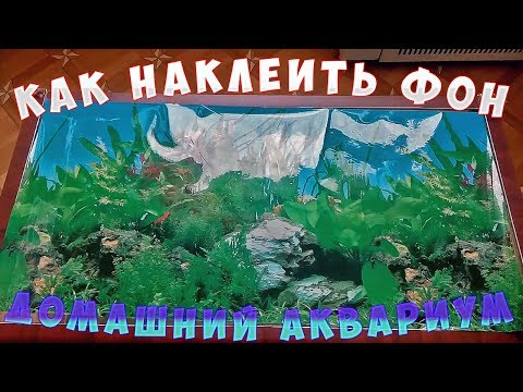 Water world #33 / Как приклеить фон в аквариуме / Обои / As the glue pattern in the aquarium