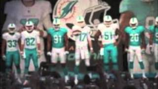 Miami Dolphins Time 2013 Official Theme video by SoLo D