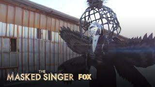 The Clues: Raven | Season 1 Ep. 6 | THE MASKED SINGER