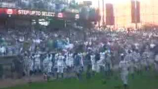 Peoria Chiefs vs Dayton Dragons Fight (Fan Video)