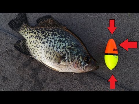 Awesome BOBBER For Catching Crappie In WIND! | How To CATCH Crappie With A Bobber
