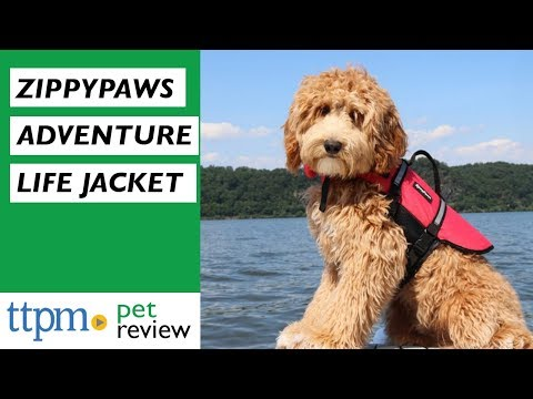 adventure-life-jacket-from-zippypaws