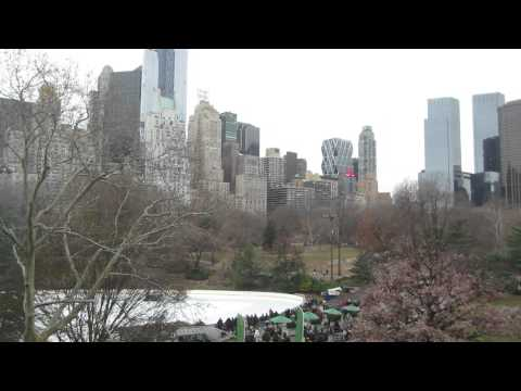 Central Park, Wollman Skating Rink and Central Park South Winter Afternoon (NYC)